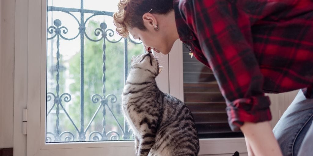 cat with owner