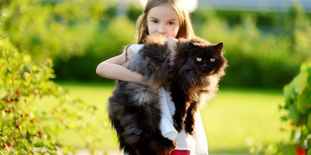 child holding a black fluffy cat