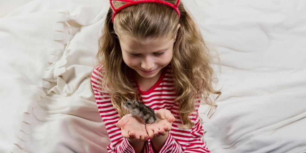 child holding a hamster
