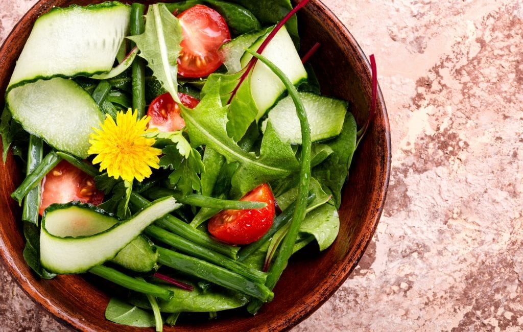 dandelion salad for iguana