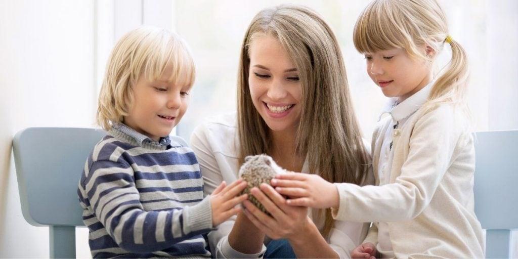 holding a pet hedgehog