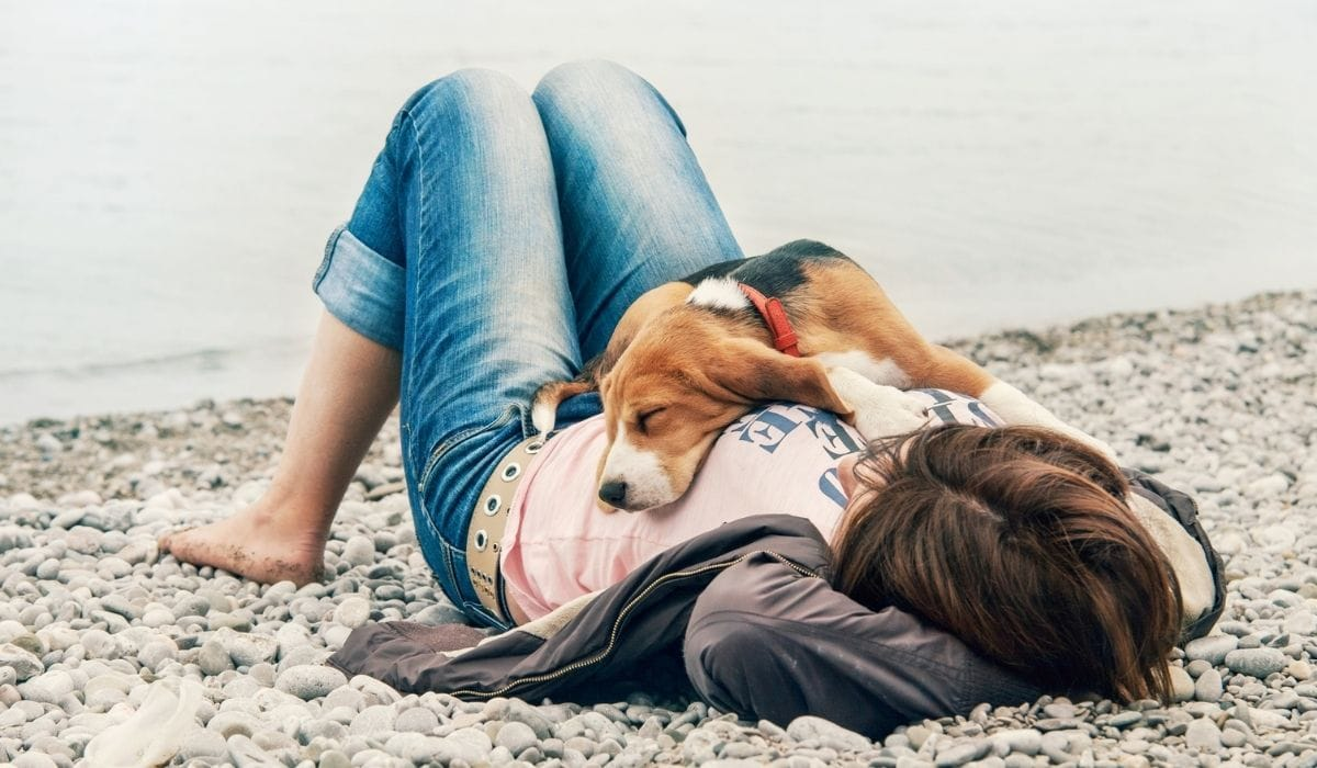 dog sleeping on the girl's belly by the seashore