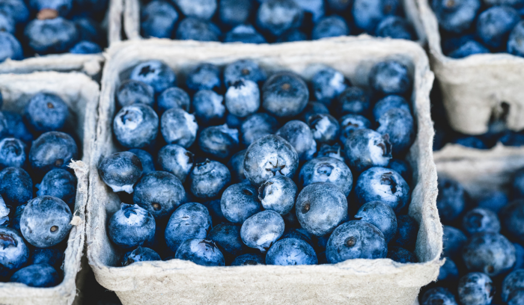Craters of Blueberries
