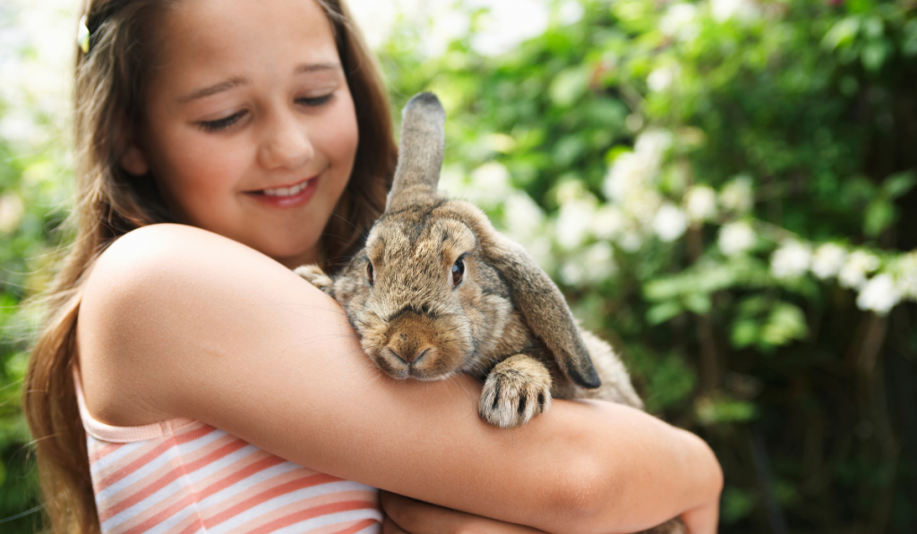 A cute rabbit held by a girl.