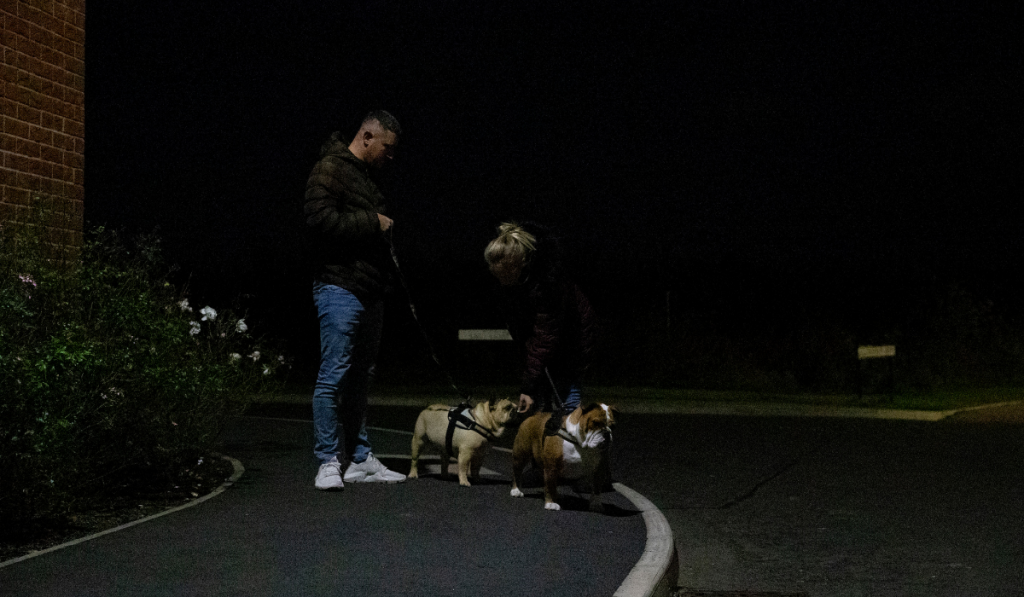 Man and woman with their dogs along the road at night.